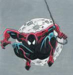 Spider-Man by Amara-Anon