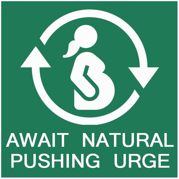 mama natural visual birth plan