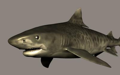 3DS Max Tiger Shark 2