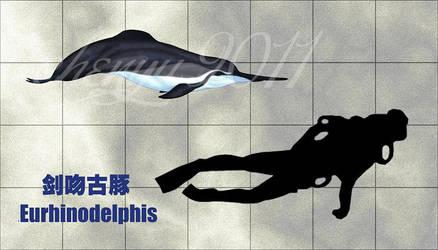 Eurhinodelphis