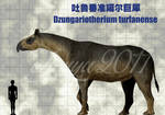 Dzungariotherium turfanense