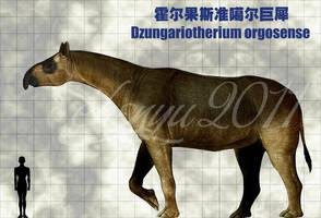 Dzungariotherium orgosense by sinammonite
