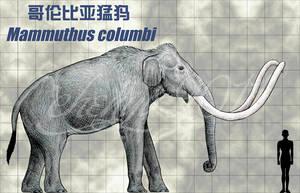 Mammuthus columbi by sinammonite