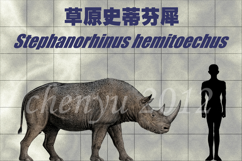stephanorhinus_hemitoechus_by_sinammonit