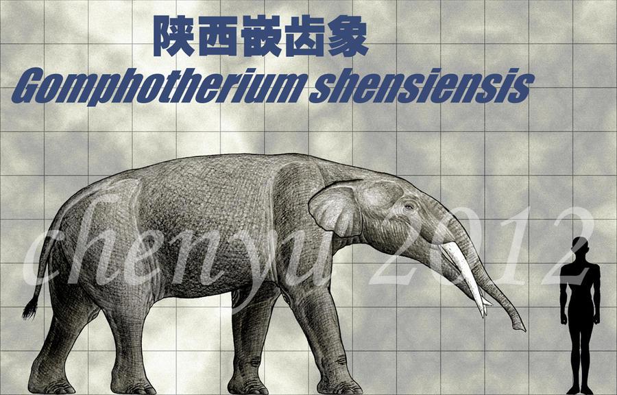 Gomphotherium shensiensis by sinammonite on DeviantArt