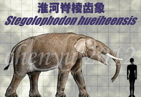 Stegolophodon hueiheensis by sinammonite