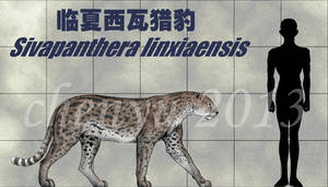 Sivapanthera linxiaensis