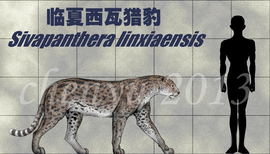 http://fc08.deviantart.net/fs71/f/2013/039/9/5/sivapanthera_linxiaensis_by_sinammonite-d5u8fux.jpg