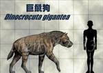 Dinocrocuta gigantea