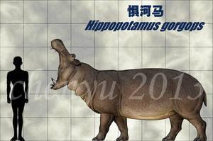 Hippopotamus gorgops by sinammonite