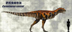 Carnotaurus sastrei by sinammonite