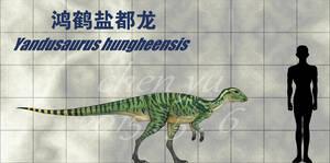 Yandusaurus hungheensis