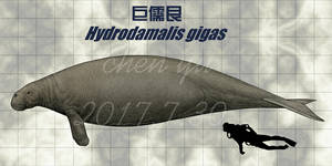 Hydrodamalis gigas
