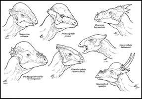 Pachycephalosauria by zakafreakarama