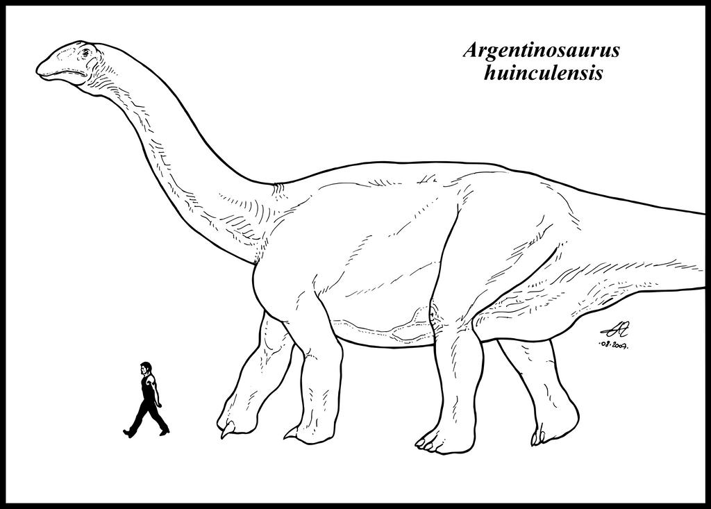 argentinosaurus coloring page - argentinosaurus huinculensis by zakafreakarama on deviantart