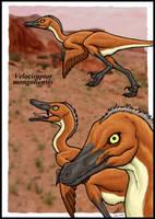 Velociraptor by zakafreakarama