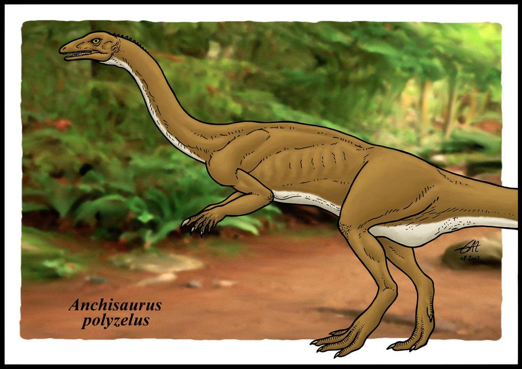 Anchisaurus by zakafreakarama