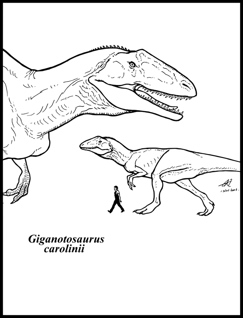 Giganotosaurus coloring pages coloring pages - Gigantosaurio Colouring Pages Page 2 Search Results Fun Giganotosaurus_carolinii_by_zakafreakarama
