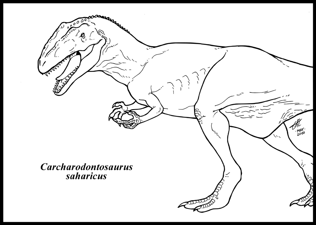 Carcharodontosaurus saharicus by zakafreakarama on deviantart for Baryonyx coloring pages