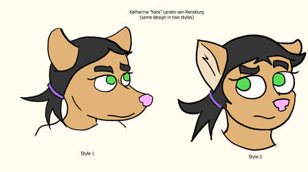 Kate Redesign Concepts