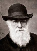 Charles Darwin 1880 by Valsayre