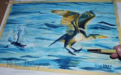 Cormorant Takeoff by Kilsley