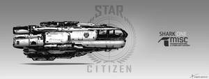 Fan Art - Star citizen Ship