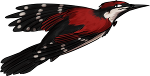 Flying Pek by Sadogus