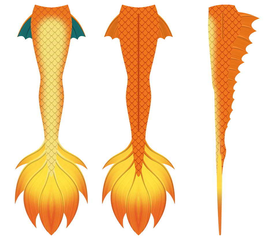 Mermaid Tail Design 2 (Charizard) by Hydra1337
