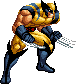 Wolverine by asura14k2