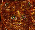 Fiery Fluffy