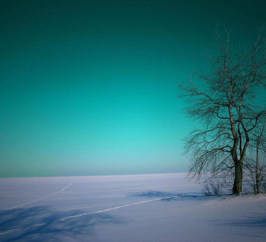 Volga by Letiso
