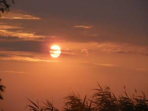 Farewell to the Sun