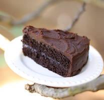 Quinoa Chocolate Cake by chompsoflife