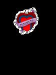 Magneto heart
