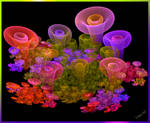 magical mushrooms by Lucy--C