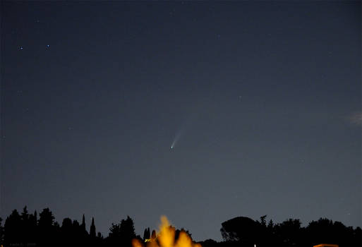 Comet NEOWISE - July 16