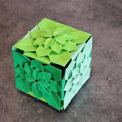 Hydrangea Cube