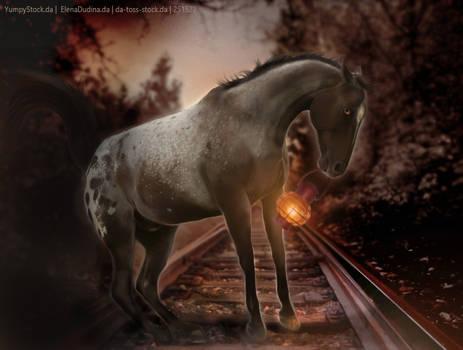 Railroad Runner By Horserider09