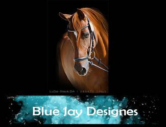 Blue Jay Designs HEE by Horserider09