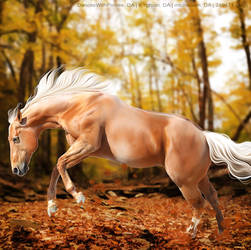 Golden Splendor HEE by Horserider09