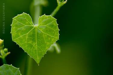 A green heart