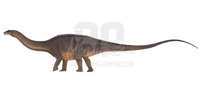 Commission - JWS Apatosaurus