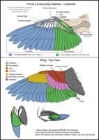 Bird Wings (Tutorial) by Key-Feathers