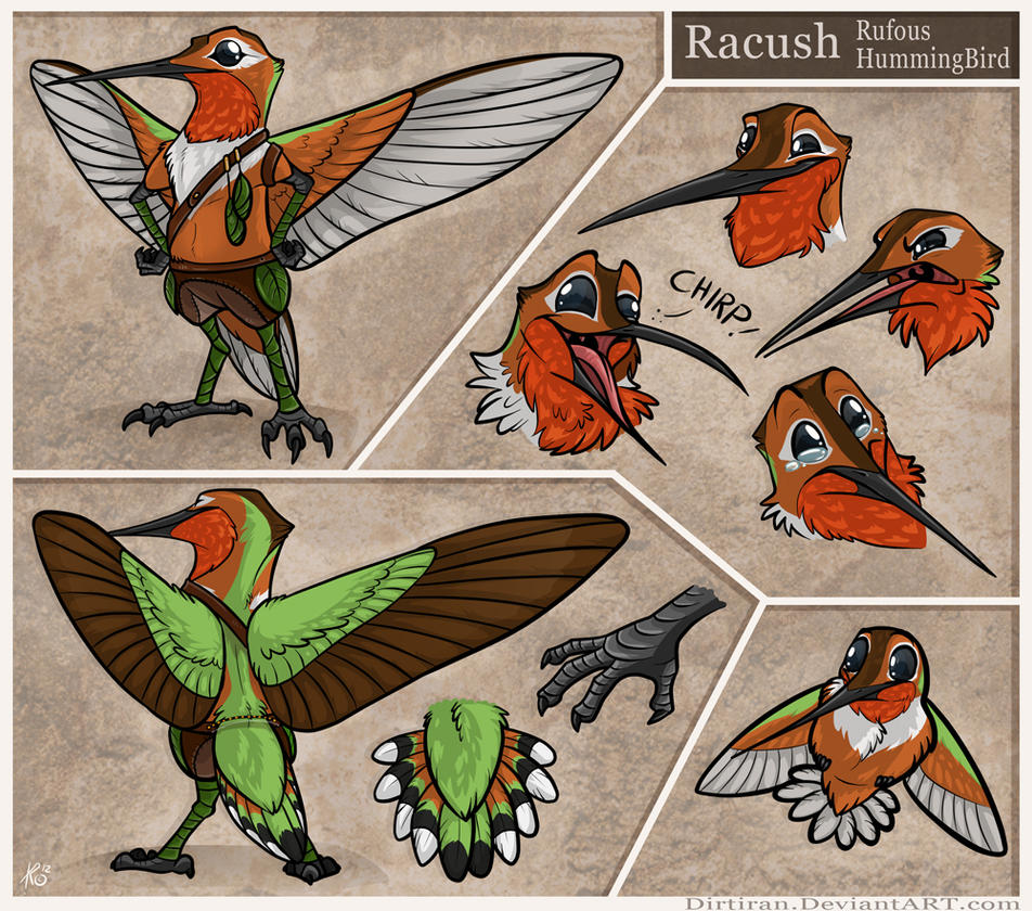 Racush Ref sheet by Key-Feathers