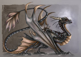 New Wyvern by Key-Feathers