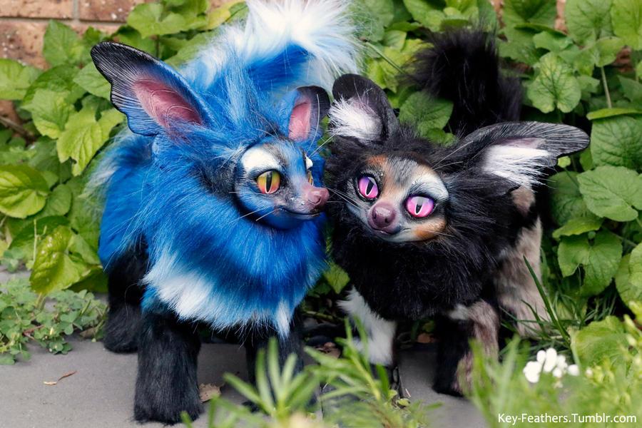 Butterfly Dogs