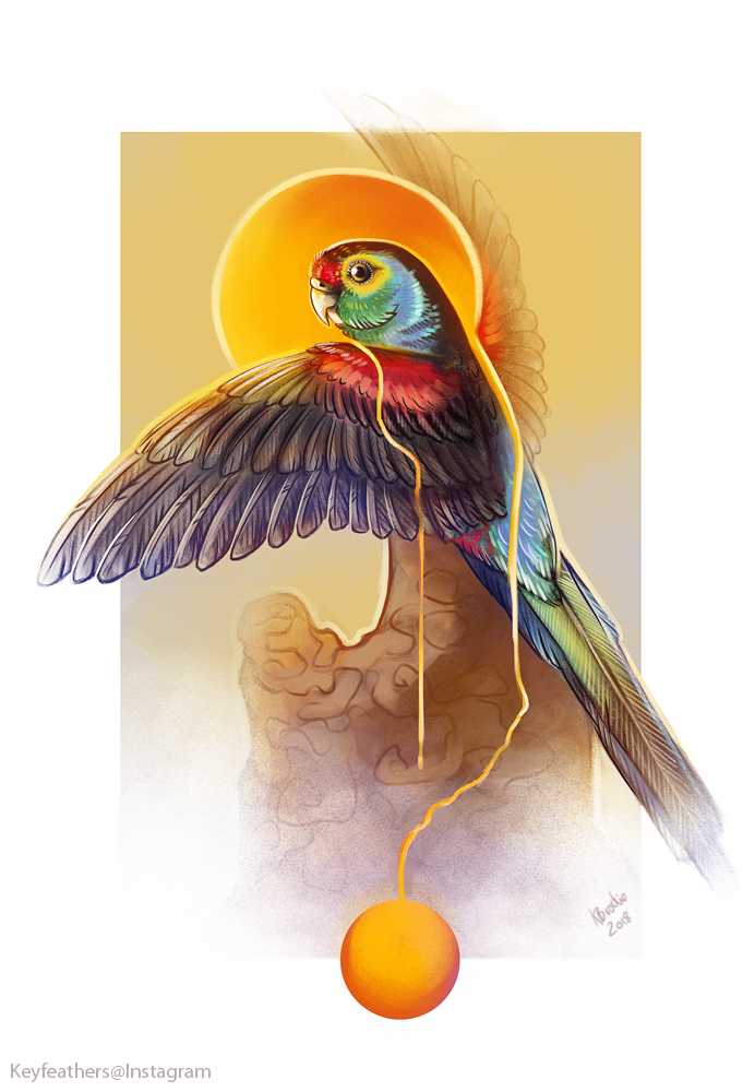 Paradise Parrot by Key-Feathers