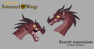 Animated wings: Kestrel Expressions