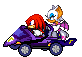 Knuckles x Rouge: MKDD by LucarioShirona